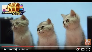 UC Browser - Fast Download YouTube video