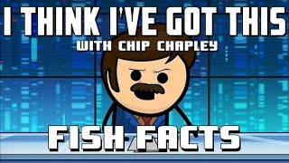 """Video I Think I've Got This With Chip Chapley - Episode 1 """"Fish Facts"""" MP3, 3GP, MP4, WEBM, AVI, FLV Desember 2018"""