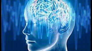 Video Alpha Waves | Improve Your Memory | Super Intelligence MP3, 3GP, MP4, WEBM, AVI, FLV September 2018