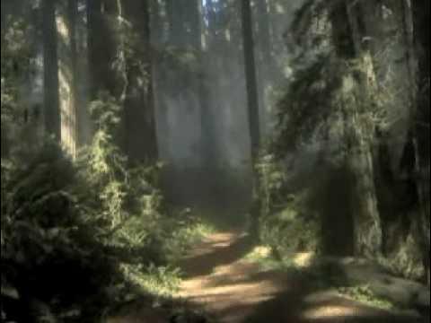 O poder da ora��o - M�sica com Chris Duran