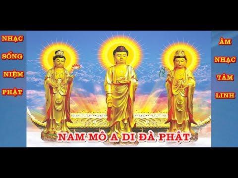 Hòa Tấu Organ Niệm Phật - Nhạc Sống Thanh Ngân