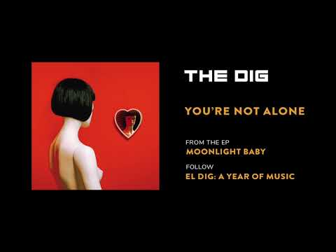 The Dig - You're Not Alone [Official Audio]