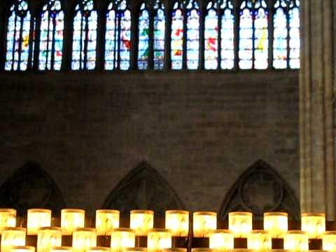 Notre Dame's Burning Candles, Rose Window