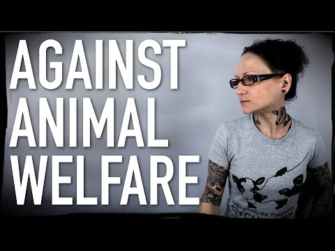 Why I'm A Vegan Against Animal Welfare