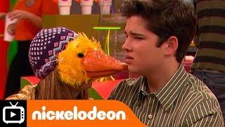 iCarly   Quackers   Nickelodeon UK