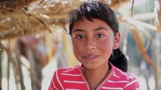 http://www.fao.org/guatemala/fao-en-guatemala/en/Cultivar plantas nativas en el huerto familiar facilita el consumo de una buena alimentación. Además, ayuda a disminuir los gastos, pues la madre y el padre ya no necesitan comprar en el mercado las hortalizas que consume su familia. FAO busca impulsar la creación de huertos familiares como una herramienta para disminuir los índices de desnutrición.  Subscribe! http://www.youtube.com/subscription_center?add_user=FAOoftheUNFollow #UNFAO on social media!* Facebook - https://www.facebook.com/UNFAO * Google+ - https://plus.google.com/+UNFAO * Instagram - https://instagram.com/unfao/ * LinkedIn - https://www.linkedin.com/company/fao * Twitter - http://www.twitter.com/faoknowledge © FAO: http://www.fao.org