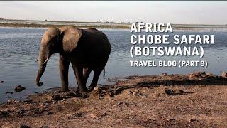 Africa - Chobe Safari (Botswana) Travel Vlog (Part 3)
