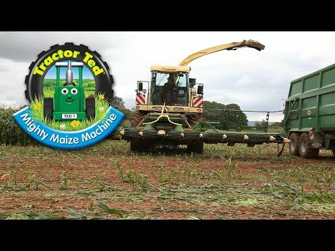 Video Trailer: Tractor Ted Mighty Maize Machine download in MP3, 3GP, MP4, WEBM, AVI, FLV January 2017