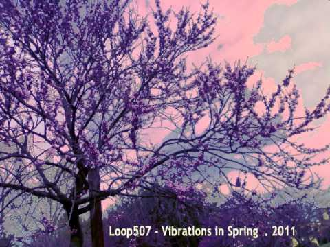 Loop507 - Vibrations in Spring