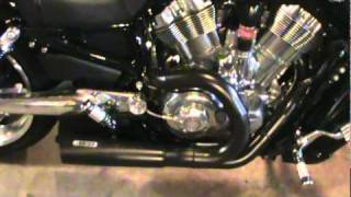 8. V rod Muscle coated pipes