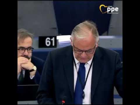 González Pons sobre cumbre UE relativa a política ...