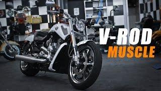 8. Harley-Davidson V-ROD Muscle - MOTO.com.br