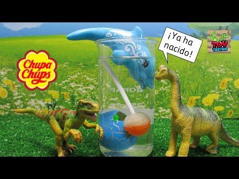 Videos caseros - Nuevo dinosaurio bebé Experimento con chupa chups de naranja  Vídeos de dinosaurios para niños