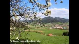 Gutach im Breisgau Germany  City pictures : Frühling in Gutach im Elztal bei Freiburg