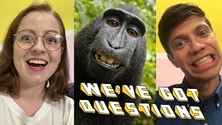 Matthew and Sarah talk about Naruto, the macaque monkey that PETA calls an artist while ruining the real artists life. - SUBSCRIBE to Above ...
