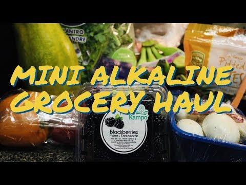 DR. SEBI MINI ALKALINE GROCEY HAUL UNDER $50