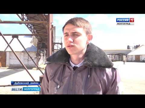 О проверке качества и безопасности зерна в Волгоградской области