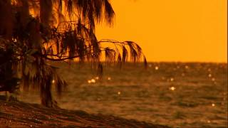 Beach Sunset Live Wallpaper YouTube video