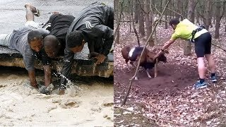 Video TOP Animal Rescues, Emotional/Inspiring/Funny Will Melt Your Heart Compilation.  REAL LIFE HEROES MP3, 3GP, MP4, WEBM, AVI, FLV Juli 2019