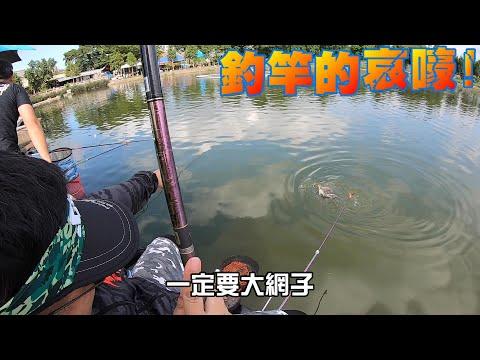 金雞湖巨大羅非魚現身!一次釣一隻就扛不住了還一次來兩隻!Fishing in Taiwan 台湾の釣り