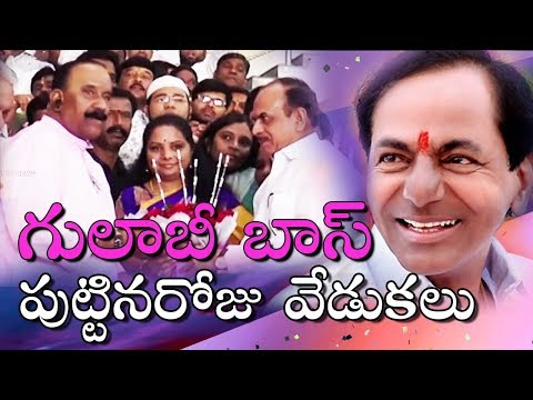 Birthday greetings - CM KCR Birthday Celebrations In Telangana, Special Poojas, Welfare Programs  ABN Telugu