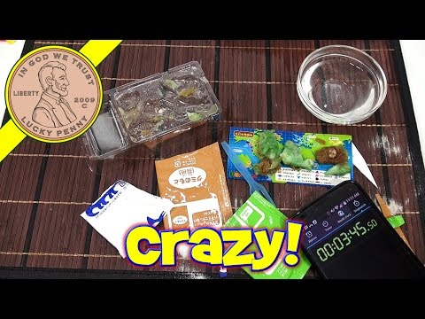 speed - I go Crazy with my Dinosaur Kracie Kit! I decided to set a Kracie Speed Record! See what happens. Buy Here ▷ http://luckypennyshop.com/kracie-dinosaur-candy-kit/ Lucky Penny Thoughts:...