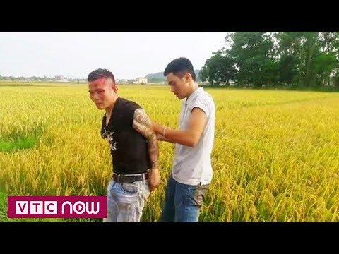 Thanh Hóa: Đưa hung khí đòi tiền bảo kê máy gặt | VTC1 - Thời lượng: 2 phút, 38 giây.