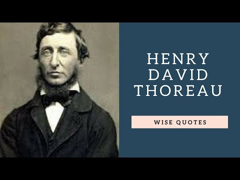 Short quotes - Henry David Thoreau Sayings Quotes  Positive Thinking & Wise Quotes Salad  Motivation