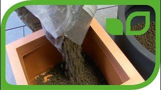 Töpfe für Kübelpflanzen vorbereiten - Schritt 2