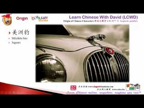 3077 豹 leopard, panther - Learn Chinese with Flash Cards -Origin of Chinese Characters