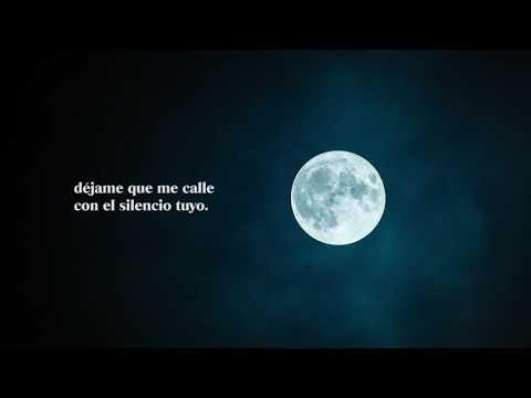Poesias de amor - PABLO NERUDA  Poema 15 -  Me gusta cuando callas