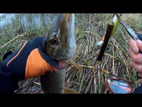 рыбалка на оке в апреле на спиннинг