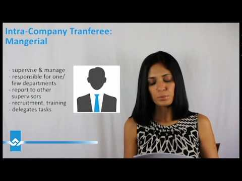 Intra Company Transferee Work Permit for Managers Video
