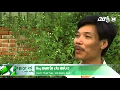 60 tấn Cyanua giả đe dọa dân Quảng Nam