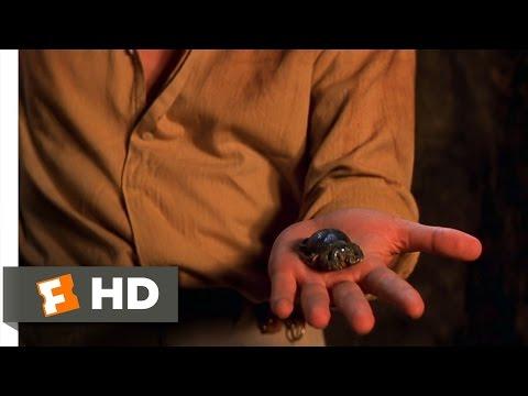 The Mummy (8/10) Movie CLIP - Scarab Attack (1999) HD (видео)