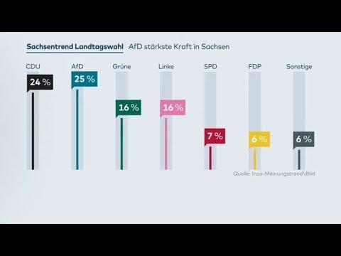 INSA-Umfrage: CDU geschockt - AfD erstmals stärkste Kraft in Sachsen vor der Landtagswahl
