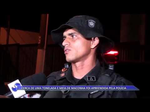 REGIÃO | 1,5 toneladas de maconha são apreendidas pelo COD