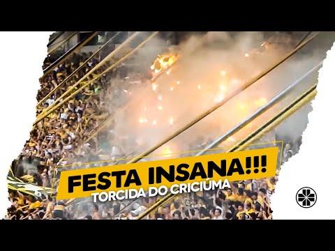Os Tigres | Asa Branca + Você nunca vai entender - Criciúma 1 x 0 São Paulo - Os Tigres - Criciúma