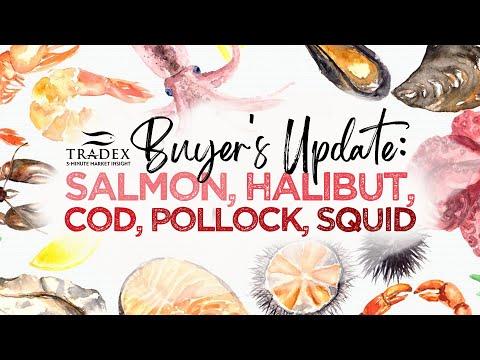 3MMI - Buyer's Update: Salmon, Halibut, Cod, Pollock, California Market Squid