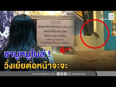 ทุบโต๊ะข่าว:ชาบูหนูโผล่สาวเผยนาทีสยองวิ่งเย้ยต่อหน้าร้านทำมึนขายต่ออ้างวิ่งทะลุฝ้าจากที่อื่น06/10/60