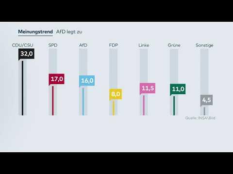 INSA-UMFRAGE: Die AfD legt wieder zu – nur ein Prozentpunkt hinter der SPD