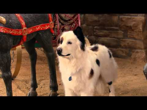 Собака точка ком (Сезон 3 Серия 6) (видео)