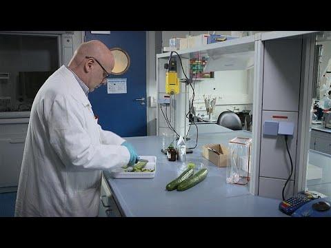 Κοινό Κέντρο Ερευνών: Ελέγχοντας την ασφάλεια των τροφίμων στην Ε.Ε.…