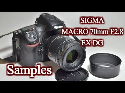 SIGMA MACRO 70mm F2.8 EX DG Sample Photos (Nikon D800,Nikon D7000) HD