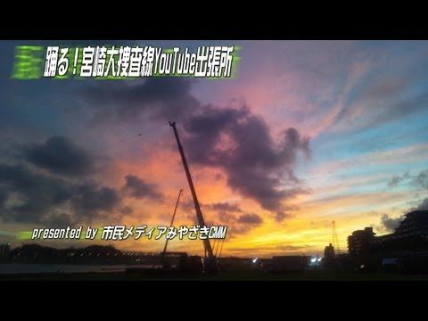 【動画フェス】1000万本のひまわり