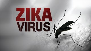 Do you know these facts about zika virus?