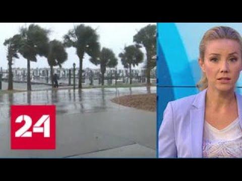 \Погода 24\: чего еще ждать от \Флоренс\ - Россия 24 - DomaVideo.Ru