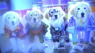Nonton Super Buddies Super Puppies Vs Robbers Episode 1 Film Subtitle Indonesia Streaming Movie Download