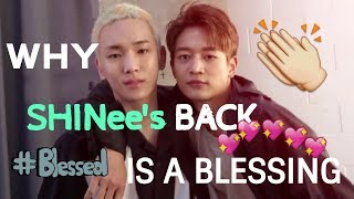 Video Why SHINee's Back is a Blessing MP3, 3GP, MP4, WEBM, AVI, FLV Januari 2019