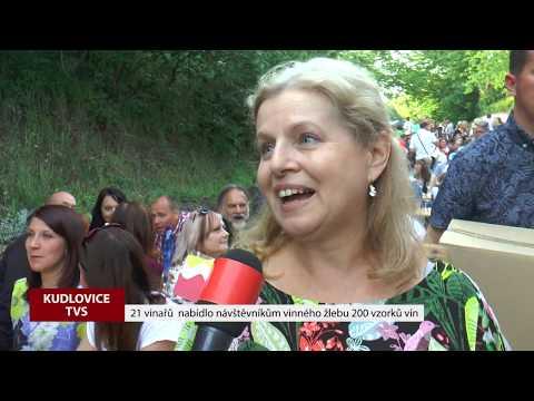 TVS: Deník TVS 4. 6. 2019